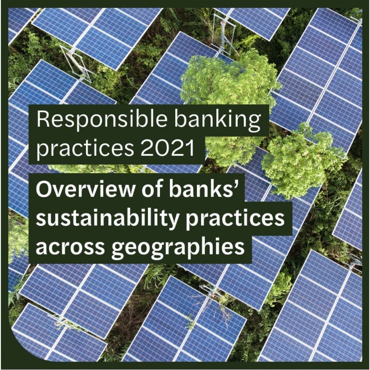 Responsible banking practices: benchmark study 2021